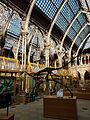 Oxford University Museum of Natural History, interior view 2, 2017.jpg