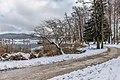 Pörtschach Halbinselpromenade Blick in die Ostbucht mit Weide und Erlen 14122019 7729.jpg
