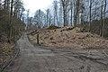 Pörtschach Leonstein Seeburger Weg 22032014 3718.jpg