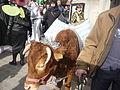 P1250728 - Vue du Carnaval de Paris 2014.JPG