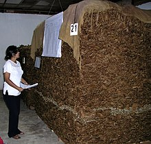 Tabac Wikipedia