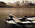PBY Catalina returns to Attu after a patrol (1).jpg