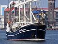 PEDRO DONCKER, IMO 8136154, Noordzeekanaal, Port of Amsterdam, pic4.JPG