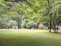 PTDC Naran Park.jpg