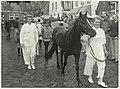 Paardenkeuring op het Gasthuisplein, tijdens de Week van het Paard. NL-HlmNHA 54005801.jpg