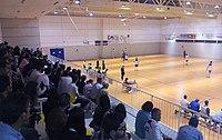 Pabellón Municipal de Deportes de Peligros.jpg