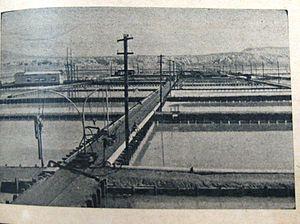 Dead Sea Works - Palestine Potash Ltd., 1945