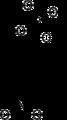 Para-Nitrophenylphosphate.png