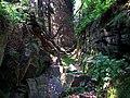Paradibakkerne - w szczelinie Dybedal - panoramio.jpg