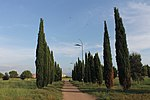 Parco archeologico di Centocelle 08.jpg