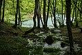 Park prirode Sana-gornji tok 1.jpg