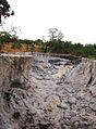 Parque nacional Aguaro-Guariquito 009.jpg