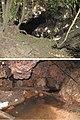 Passa Três cave (10.3897-subtbiol.28.31801) Figure 2.jpg