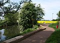 Path by the River Tone - geograph.org.uk - 802921.jpg