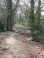 Path towards Peasmarsh Junction on the Portsmouth railway line - geograph.org.uk - 1220080.jpg