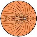 Pattern of Retinal Nerve Fibers.jpg