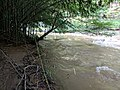 Patuxent River State Park 59.jpg