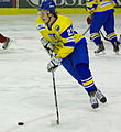 Pavlo Bolshakov (Ukraine ice hockey 2010).jpg