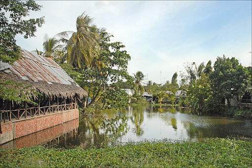 Paysage des rives du Bassac (Long Xuyen, Vietnam) (6635534213)