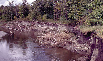 River bank failure - High flows erode the steep banks of the Pembina River, in northeastern North Dakota, contributing to the high sediment load.