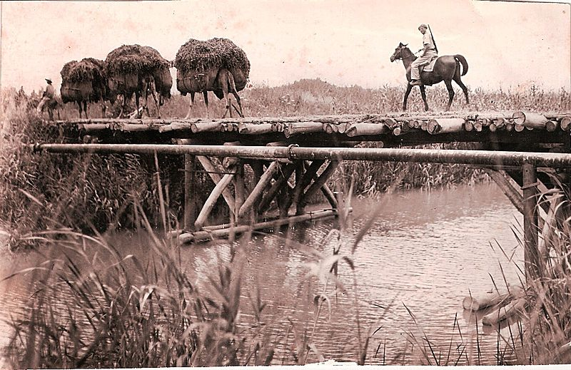 גשר העץ על נחל אלכסנדר