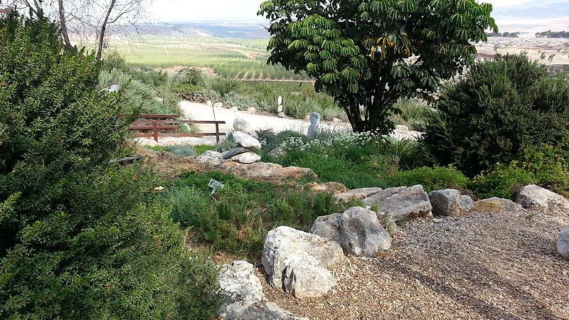 גלבוע - חוות התבלינים