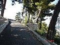 PikiWiki Israel 61522 a path in the fortress garden in safed.jpg