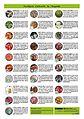 Piràmide d'aliments Página 2.jpg