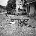 Plëh (plug) s kolci, plužnimi kolci ali po starem s plužnami. Zadnja faza pred celotnim železnim plugom. Markovščina 1955.jpg