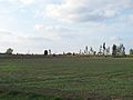 Podlaskie - Suchowola - Karpowicze 20110925 06 cmentarz.JPG
