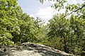 Poet's Seat, Greenfield, Massachusetts 01301, USA - panoramio (9).jpg