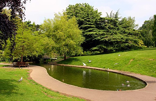 Pond in Royal Victoria Park - geograph.org.uk - 2068151