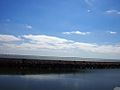 Ponte Vasco da Gama (14216869518).jpg