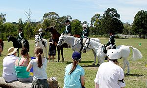 Pony Club Association of Victoria - Monash Pony Club, located in Melbourne, Australia