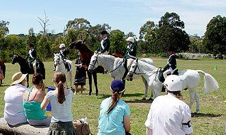 Pony Club Association of Victoria - Monash Pony Club, located in Melbourne, Australia