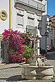 Portalegre - Portugal (47536692711).jpg