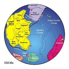 Positions of ancient continents, 550 million years ago.jpg