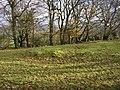 Prehistoric cairn - geograph.org.uk - 1586413.jpg