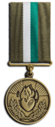 President's Award for Anti-Terrorist Operation Humanitarian Service.png