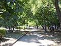 Prokhorovski Garden.jpg