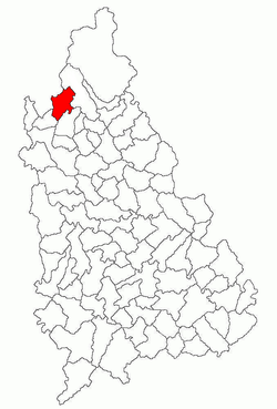 Vị trí của Pucheni