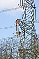 Pylons are bigger than you think (2) - geograph.org.uk - 770258.jpg