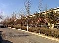 Qingzhou, Weifang, Shandong, China - panoramio (16).jpg