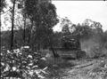 Queensland State Archives 1661 Site preparation and land clearing by bulldozer Serviceton Inala Brisbane c1950.png