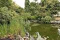Quitos botaniska trädgård-IMG 8767.JPG