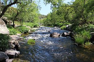 Tiétar (river) - The Tiétar in the province of Toledo