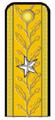 RO-Navy-OF-7s.png