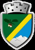 Wappen von Huedin