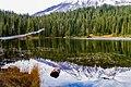 Reflection Lakes Mount Rainier Seattle (127328459).jpeg