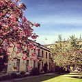 Regent's Park College Quadrangle.jpg